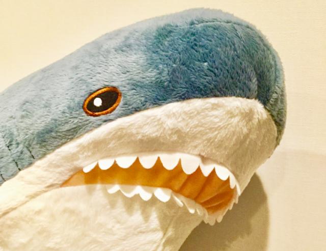 【これは怖い】危険なサメ水槽の洗い方がついに明らかに → その手があったか…やっぱ怖い