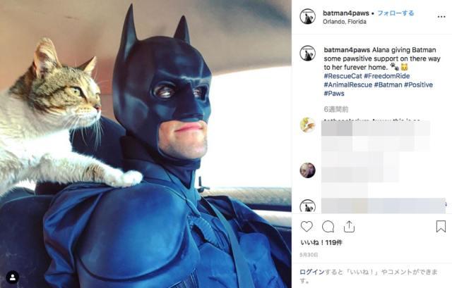 ガチのバットマンのコスプレで動物たちを救う男性がカッコよすぎる