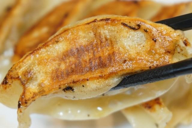 【餃子の王将】にんにくゼロの『生姜餃子』は最強の新メニューかもしれない / にんにくアリの餃子と食べ比べて気づいたこと