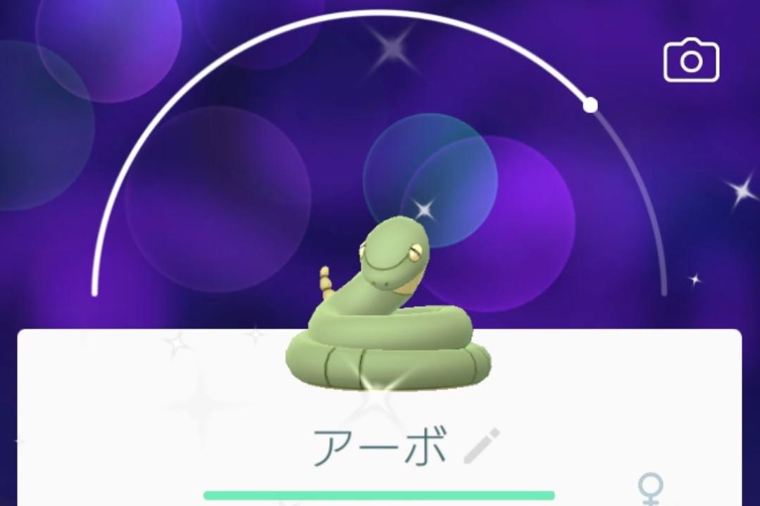 色違い 紫 ポケモン