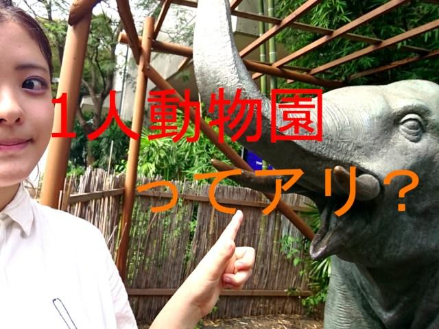 【難易度高い】「1人動物園」はアリ? ぼっちで東京・上野動物園に行ってみた!