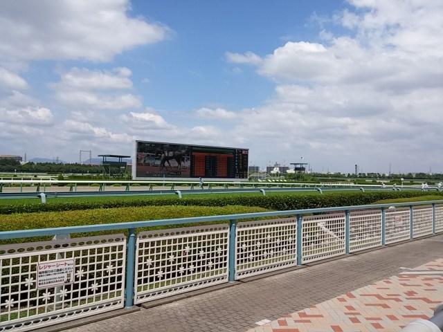 結果あり【競馬予想】少頭数でも悩ましい…有力馬の適性、買うべき穴馬を探ります / オールカマー&神戸新聞杯
