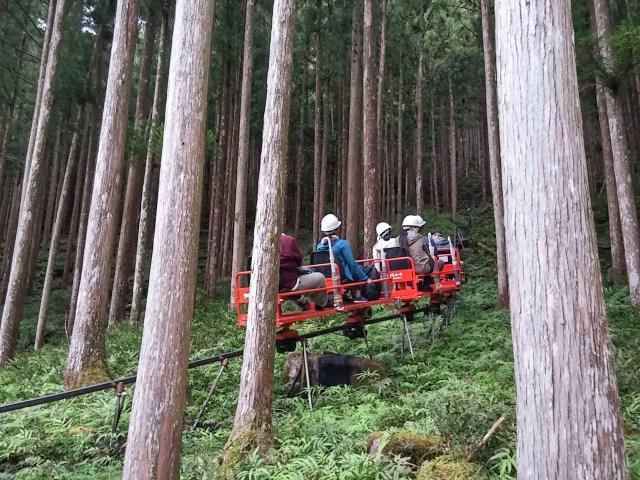 【珍スポット】まるで森の中を行くジェットコースター! スリル満点のモノレールで目指す奈良・五代松鍾乳洞が面白い
