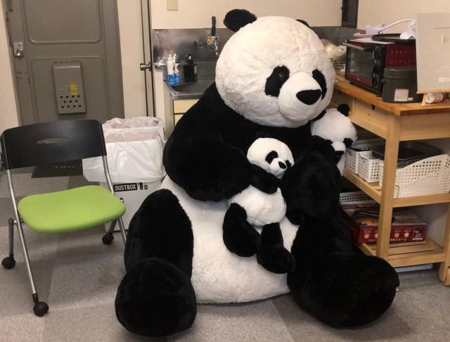 ユニクロが始めた『自動採寸サービス』で超巨大なパンダのぬいぐるみを計測しようとしたら…「なんかスゲぇ」となった