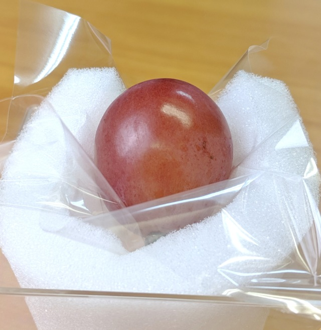 俺は何を血迷ったのか、1粒1080円のぶどうを食っちまった…… / 東京・伊勢丹新宿店