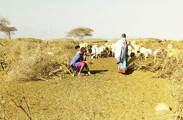 マサイの主婦たちは井戸端会議で何を話しているのか? 「旦那の愚痴」もマサイ族ならではの悩み / マサイ通信:第294回