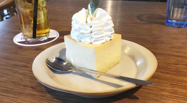 """10分間で2000本売れた """"幻のチーズケーキ"""" を前にして、過去最大にうならされた / 東京・小竹向原「CRIOLLO(クリオロ)」"""