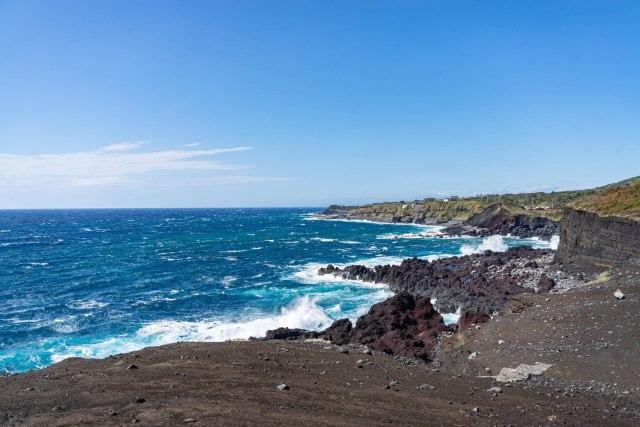 台風15号から1カ月…あまり報道されない伊豆大島を見てきた