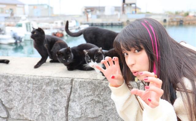 【画像多数】岡山の『猫島』こと真鍋島に行ってみたニャ
