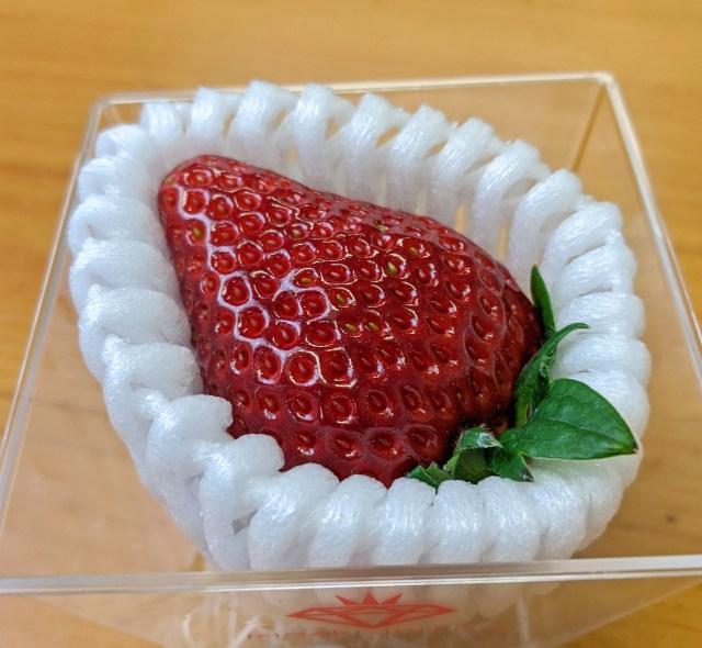 俺は何を血迷ったのか、1粒1080円もするイチゴを食っちまった…… / 伊勢丹新宿店