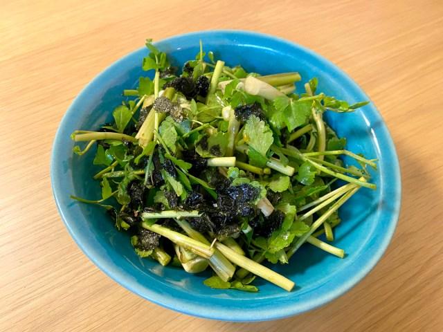 【最強レシピ】たったの3分で完成!「セリのサラダ」が罪深いウマさ