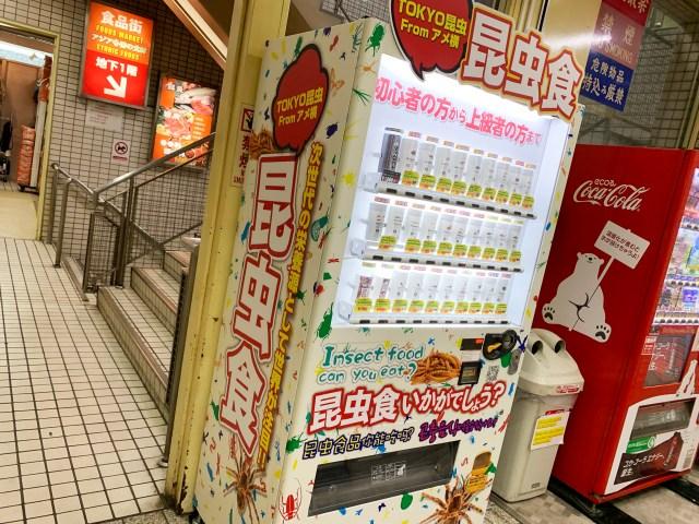 【注意喚起コラム】上野の「昆虫食自販機」でタランチュラを買う時に知っておいた方がいいこと