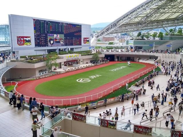 【競馬予想】タイトル奪取へ機は熟した! 少頭数の大阪杯は適性ドンピシャのダノンキングリーから手堅く仕留めます