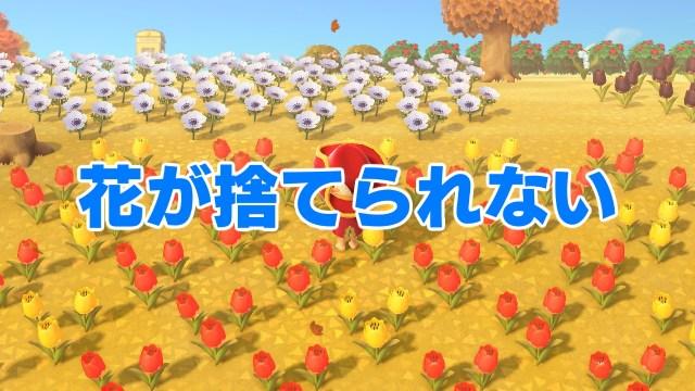【あつ森】「いらない花が捨てられない」の巻 / 第6回「あつまれ どうぶつの森」日記