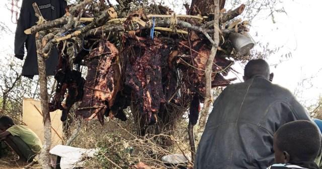 【キッチンマサイ】牛の「干し肉」を作るときの注意点 / マサイ通信:第382回