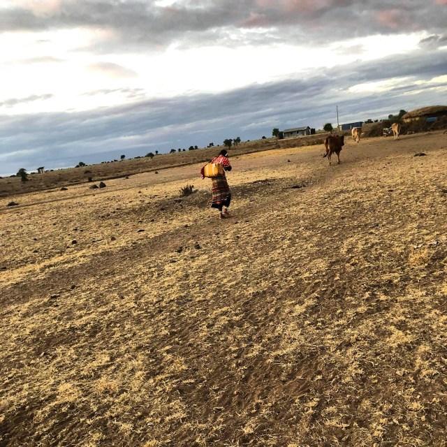 マサイ族がiPhoneで撮影したマサイ族の超日常写真集パート3(画像補正版) / マサイ通信:第407回