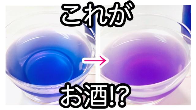 美しい青色のお酒「清藍」飲んでみた → しかも色が変化しちゃう! 摩訶不思議なお酒