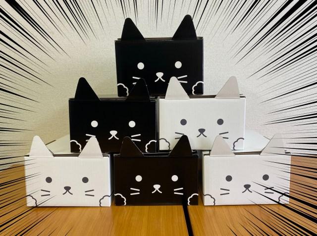 【困惑】クロネコヤマトの『ネコ耳ボックス』が可愛すぎて誰にも送りたくない … !