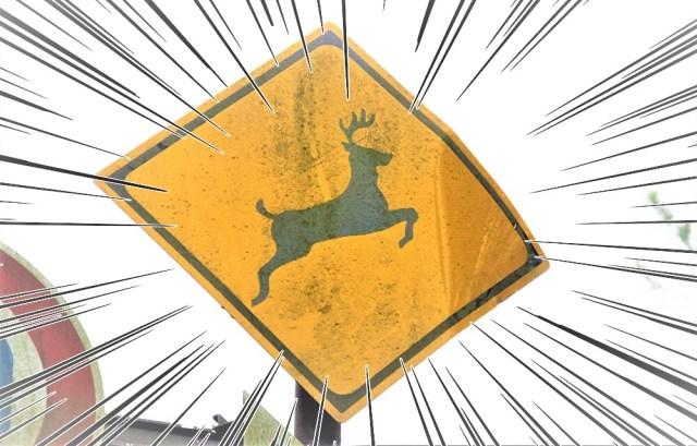 """「鹿」の道路標識は """"角の向きが逆問題"""" について → 結局、あの鹿はナニモノなのか考えてみた結果! ついに正体判明か!?"""