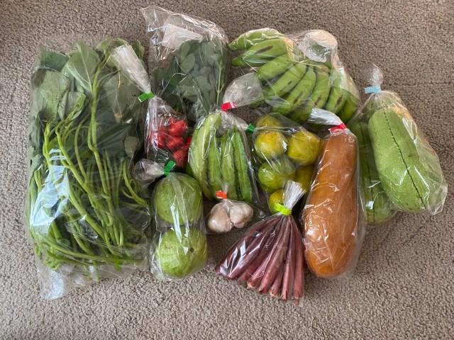 【沖縄】カンダバー、モーウィ、カーブチーに長寿草? 聞いたこともない島野菜ぜ〜んぶ買ってランキングにしてみたら … 最下位だけ圧倒的だった