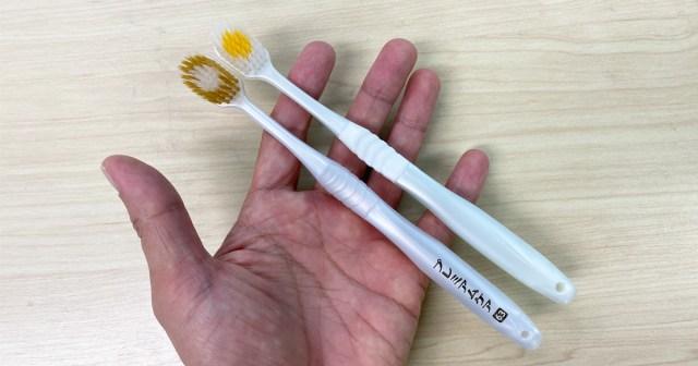 【100均検証】幅広ブラシ『プレミアムケア』にソックリな歯ブラシがダイソーに売ってたので磨き比べしてみた