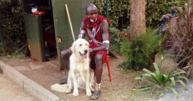 15万円の犬を売るためにカフェの前で買い手を待ち続けるマサイ族に話を聞いてみた /  カンバ通信:第36回