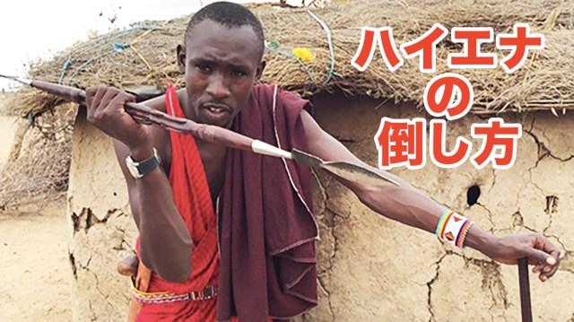 マサイ族の戦士が教える「ハイエナの倒し方」 マサイ通信:第433回