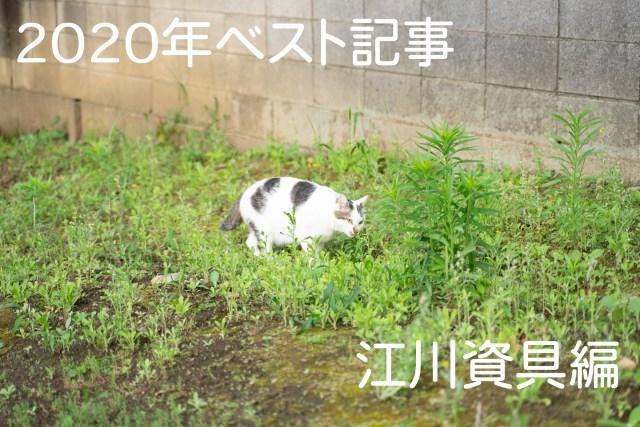 【私的ベスト】記者が厳選する2020年のお気に入り記事 ~江川資具編~