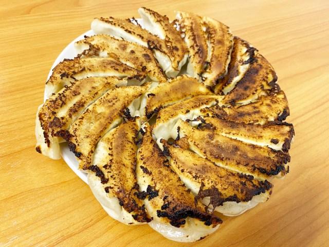 【お取り寄せ餃子】北海道の「北の匠」は何もつけなくても最高のパフォーマンスをする餃子だった