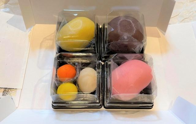 【挑戦】家で生菓子を自作しようとした結果 / 京菓子司『俵屋吉富』の「手作り和菓子キット」を使ってみた