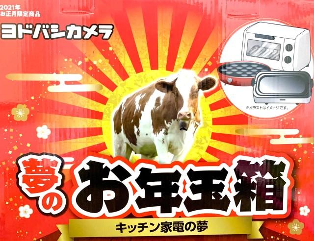 【2021年福袋】ヨドバシの「お年玉箱 キッチン家電の夢」がオシャレすぎた!