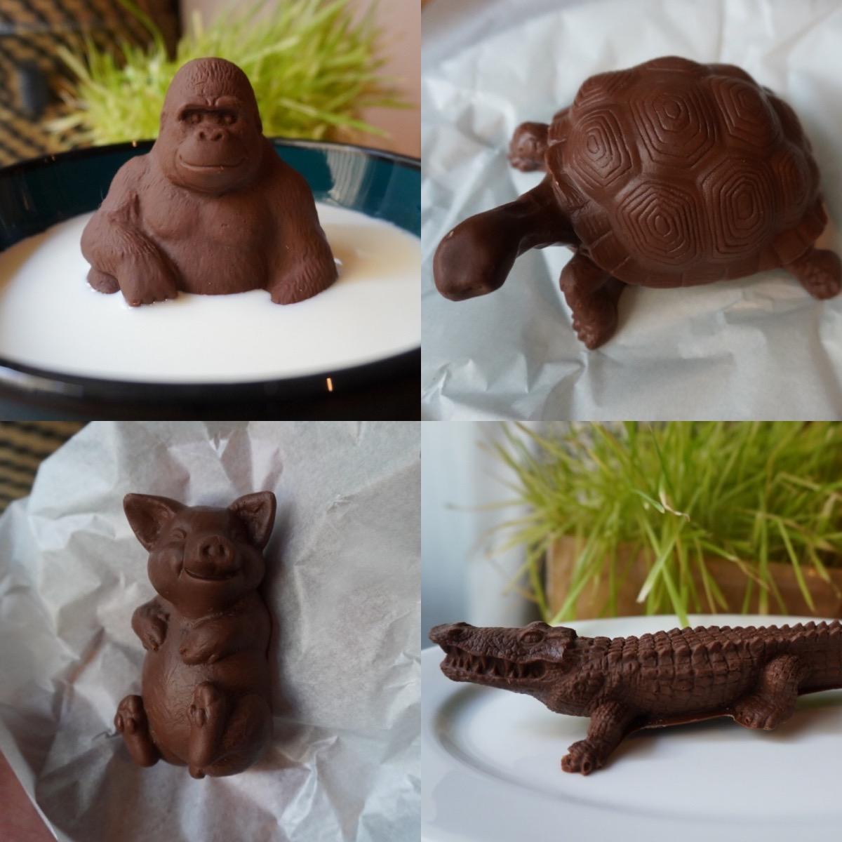 チョコ 動物