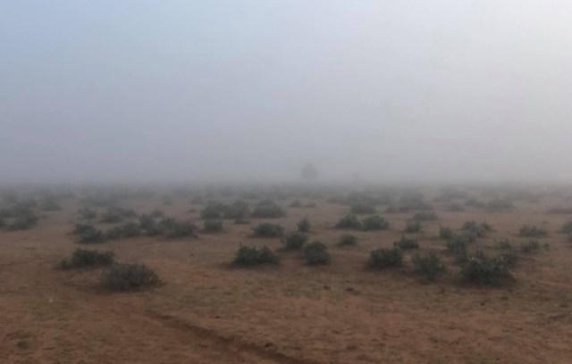 【豆知識】アフリカのサバンナでも雪は降る / マサイ通信:第451回