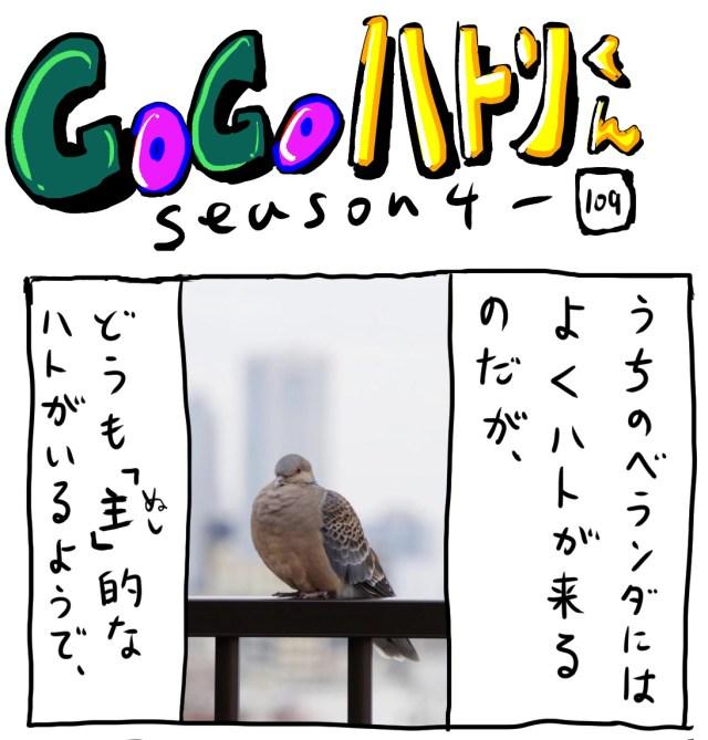 【代打4コマ】第189回「主(ぬし)のハト」GOGOハトリくん