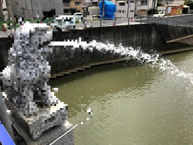 【珍スポット】福岡で見かけたマーライオンのインパクトはシンガポール以上 / 狛犬が水を吐くってマジかよ