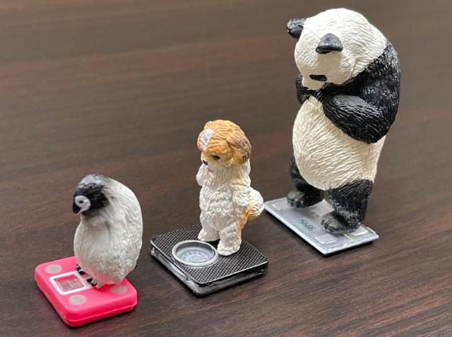 【カプセルトイ】めちゃくちゃ体重を気にする動物たち! タニタとコラボの動物フィギュアがジワる
