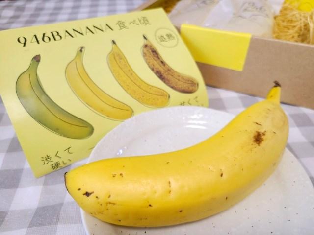 【驚き】北海道産のバナナ!? しかも1本1080円!? 北国育ちの実力はいかに…!?