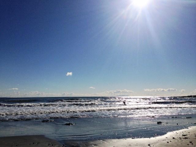 【衝撃】水着で乗車できる「日サロバス」爆誕! 海に行く前に日焼けできるってマジかよ!