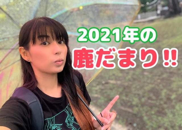 【2021年夏】今年も『鹿だまり』を見に行ってみると → ソコにはかつてない光景が広がっていた……!