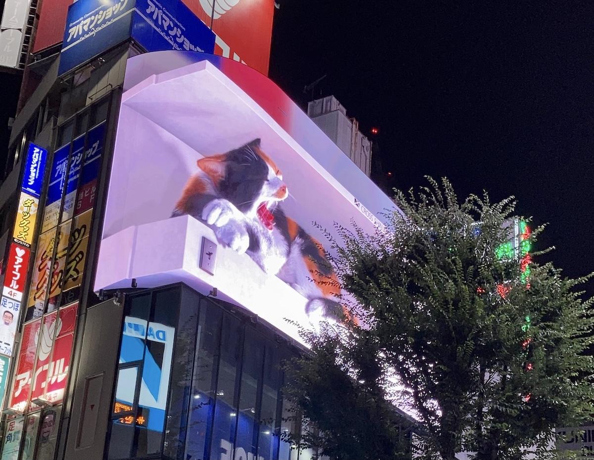 新宿駅東口の巨大猫をゆっくり見るなら「おやすみ編」がおすすめ / リアル過ぎる3Dニャンコが超かわえええ〜〜
