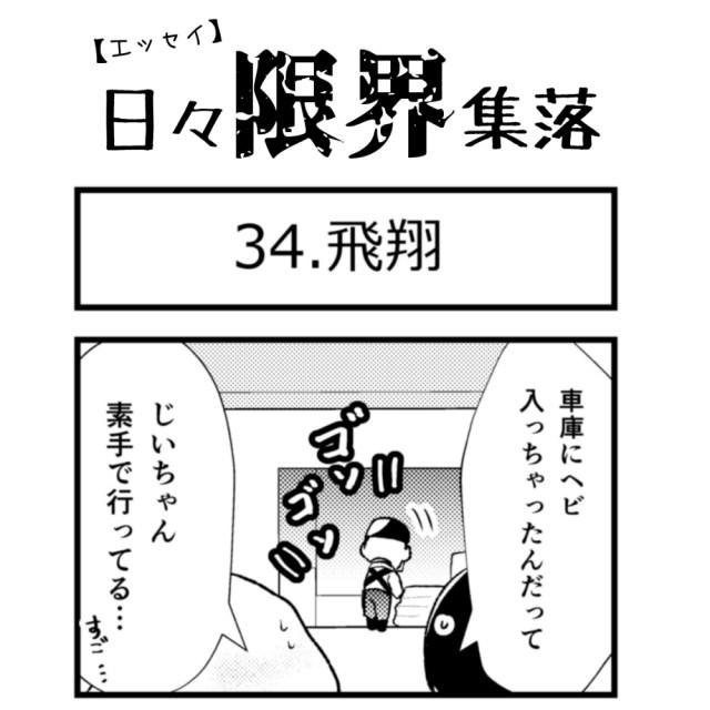 【エッセイ漫画】日々限界集落 34話目「飛翔」