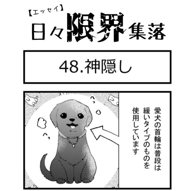 【エッセイ漫画】日々限界集落 48話目「神隠し」