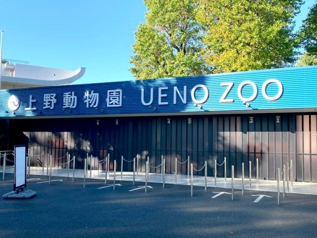 【疑問】パンダは「シャオシャオ」「レイレイ」みたいな名前しかダメなのか? たまには「幸子」みたいな名前でも良くない? 上野動物園に聞いてみた